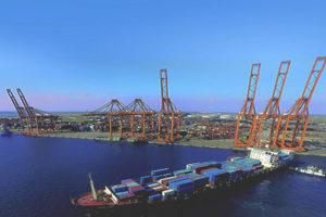 Supply Chain Eredyne Group